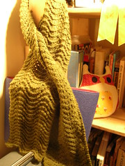 Feather & fan scarf (stupid clever) Tags: scarf knitting knit featherandfan malabrigo knitscarf