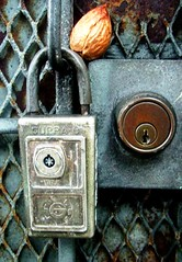 locks and a gate