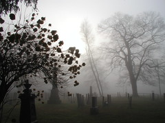 The FOG (Balalalu) Tags: usa cemetery fog sunrise connecticut headstones tombs