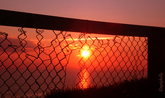 You can't fence me in!! (Dave - aka Emptybelly) Tags: blue light sunset pordosol red panorama orange cloud brown sun black sol beautiful silhouette yellow bronze fence skyscape fire gold coast zonsondergang wire colorful paradise tramonto shadows sonnenuntergang purple sundown dusk horizon tan violet glorious mauve coastline rays colourful dmmerung sunrays southcoast crpuscule picturesque bournemouth eb southbourne firelight glamorous puestadelsol wirefence coucherdusoleil southbournebeach schemer wondrous dgr wirenet emptybelly obsessiveflickrites oscuridadoscuridad comebacksunsets wemissseingyourcolours behindthegreycloudsandfog wasitsomethingwesai