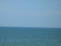 Geyser de baleine