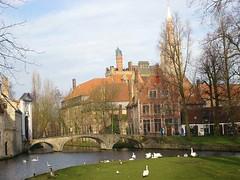 Minnewater, de zwanenbevolking en Begijnhofingang... (M@rkec) Tags: brugge minnewater begijnhof zwanen