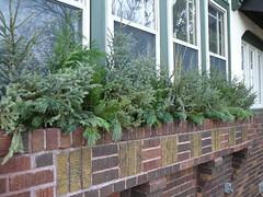 Evergreen flowerbox
