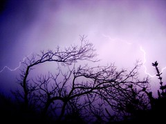 lightning (Fer Gregory) Tags: pictures camera city storm milan tree art mxico night mexicana de mexico interestingness code interesting friend icons flickr foto photographer with purple artistic photos background sony creative taken 8 cybershot myspace icon mexican fotos fernando mexique lightning gregory rayo 80 f828 mexicano sets camara con recent dsc comments comment n1 groups megapixel fotografo tomadas coments hi5 codes relevant freg dscf828 artisticas dscn1 coment megapixeles fernandogregory fr3g flickrphotoaward cybershotdscf828 reg