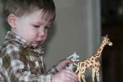 emery wi th giraffe