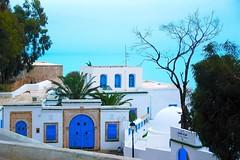 103-西迪布薩伊德-鳥瞰地中海
