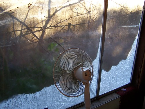Fan in Icy Window2