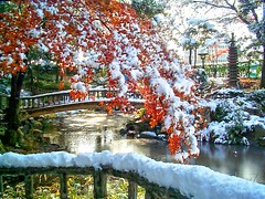 First Snow Kanayama Nagoya, Japan (Steve-kun) Tags: snow park bridge japan red pond tree stephen art photo photoghraphy camera canon lejapon  ilgiappone  japo  japn diamondclassphotographer   httpwwwflickrcomgroupsforeveryone nagoya aichi nagoyacity   kanayama  templesshrinescastlesofjapan anawesomeshot stephendraper stevedraperpictures draperphotography stephendraperphotography  flickrcom jp flickrjp flickrflickr jpcom