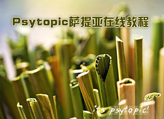 psytopic.com