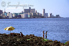 The Vedado skyline as seen from Havana (tommyimages_com) Tags: ocean sea latinamerica water horizontal swimming women havana cuba caribbean cuban habana touristattractions lahabana hotelnacional vedado elmalecon ciudaddelahabana subathers