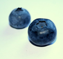 The Naked Blueberry (Ginger Sarah) Tags: blue macro cute closeup naked shiny poetry yum little things blueberry they arent pays blueberries