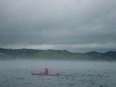 Kayaker in the Mist (Blaine Pearson) Tags: newfoundland keepexploring
