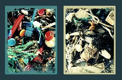 Washed up - Beach life (s0ulsurfing) Tags: wood seaweed beach beautiful stone trash photoshop found bay coast garbage junk diptych colours acid debris creative rope litter plastic busy crap shore stuff isleofwight ugly rubbish stunning oily layers washed discarded flotsam filters technique crusty bleached 2007 treatment beachcombing jetsam instantfave s0ulsurfing