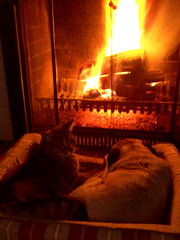snugglin' in front of the fire