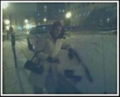 Jess, snow, car
