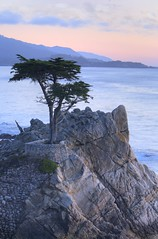 The Lone Cypress (jauderho) Tags: california usa topv111 canon bestof 2006 carmel 5d hdr topvaa jauderho utatafeature 98280mm