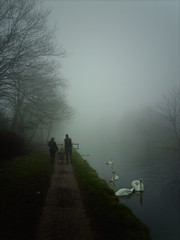 Misty walk (hugovk) Tags: camera uk greatbritain winter england mist beautiful weather silhouette misty fog digital manchester grey canal swan gloomy unitedkingdom britain sale walk gray cygnet foggy picture swans gb gloom february hvk talvi atmospheric cygnets towpath 2007 bridgewater bridgewatercanal helmikuu limitedvisibility bbcmanchesterblog mistywalk imag1131 hugovk utterlybeautiful exif:ISO_Speed=50 beautifulatmosphericpicture exif:Focal_Length=77mm digitalcamerads5mp exif:Flash=offdidnotfire exif:Exposure=177 exif:Aperture=30 exif:Orientation=horizontalnormal exif:Exposure_Bias=0 ds5mp camera:Model=ds5mp camera:Make=digitalcamera meta:exif=1380263699