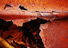 outside looking in (another story) Tags: old red orange brown texture broken leaves metal trash rust close barrel oxygen worn compost
