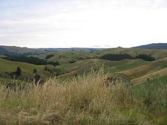 Kaweka Panorama (KidGizmo) Tags: christmas newzealand hawkesbay awaawanui