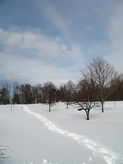 IMG_4696 (jbartlet) Tags: winter snow burlington vermont vt starrfarm