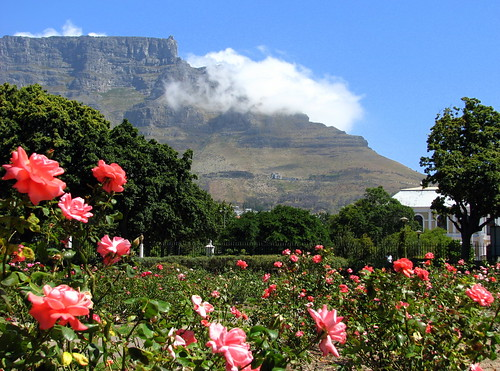 Table Mountain A rosy sunday in  CapeTown