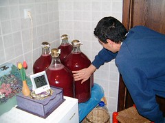 Homewine Fermentation Temperature (Okan Kitis) Tags: canon 350d 1855mm temperature rebelxt winemaking fermentation