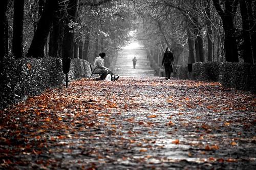 Otoño todavía / Autumn still
