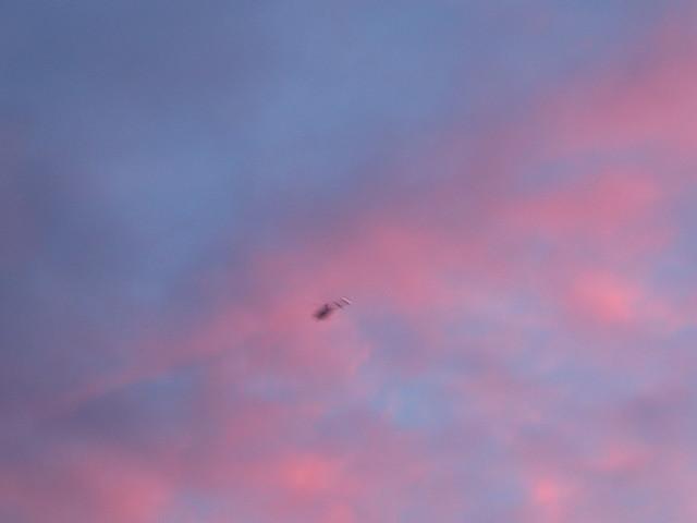 sunrise2-6
