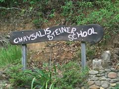 Chrysalis Sign