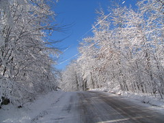 Winter Wonderland (akahodag) Tags: winter snow wisconsin breathtaking rhinelander 10faves