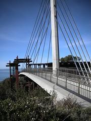 Scripps Crossing Pedestrian Bridge