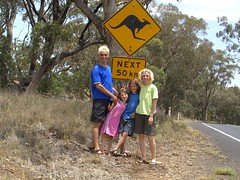Kangaroos Ahead
