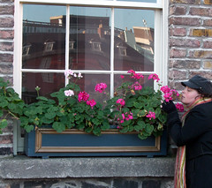 Bloom (gisele13) Tags: flowers ireland dublin self gisele december2006 dublingarden
