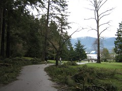 """stanley park mess • <a style=""""font-size:0.8em;"""" href=""""http://www.flickr.com/photos/70272381@N00/343519764/"""" target=""""_blank"""">View on Flickr</a>"""