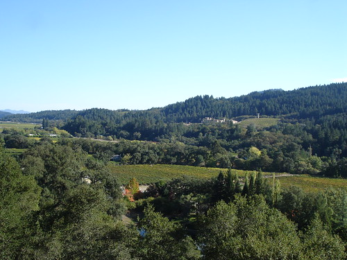 Sterling Vineyards by lyng883