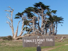 20070107 Tomales Point Trail