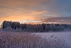 Sunset Nordbytjernet (Krogen) Tags: winter nature norway wow landscape norge vinter natur norwegen olympus c7070 noruega scandinavia akershus romerike krogen landskap noorwegen noreg ullensaker skandinavia jessheim nordbytjernet abigfave