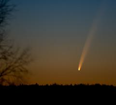 McNaught (mattisj) Tags: sky geotagged explore comet topf100 taivas mcnaught tornio abigfave pyrstötähti komeetta hellälä geo:lat=658082 geo:lon=241602