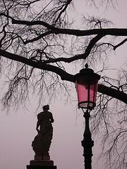 some pink (hanna.bi) Tags: pink venice sculpture tree lamp statue fog grey branches marble albero venise venezia arbre venedig rami