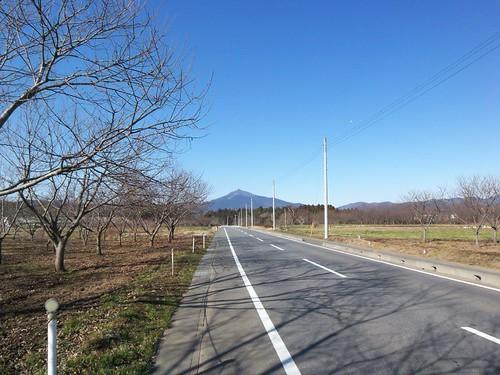 ... 筑波山へ向かってひたすら走る