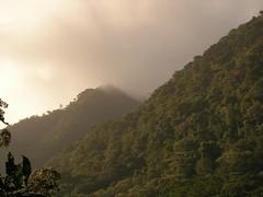 Fog in El Valle