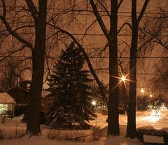 (Zanastardust) Tags: winter snow canada night quebec greenfieldpark jan2007 zanastardust tepasaste