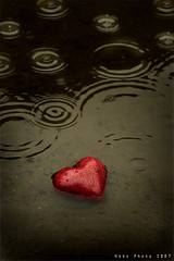 MY Wounded Heart .... (Heba AL-Jadaan (Heba _ photo)) Tags: red black love water rain friend heart little wounded kuwait wound q8 heba myheart
