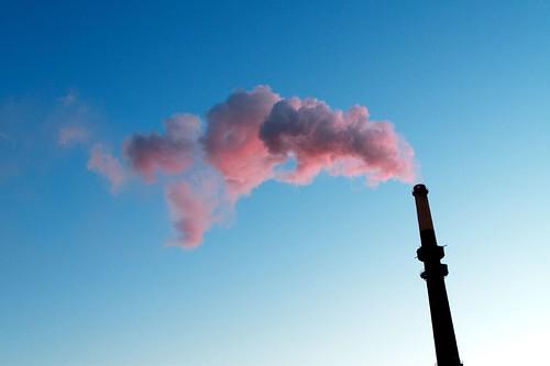 Cute Pollution