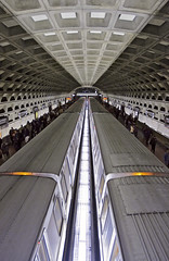 DC Metro (...like a chimp with coconuts) Tags: travel station underground subway washingtondc vanishingpoint architechture metro tunnel ceiling passengers commute backlit img6429 gallerypichinatown