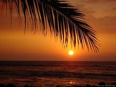 Hawaii sunset (Michael Rys) Tags: 15fav beautiful 510fav hawaii nice bigisland 110fav kona 333v3f 222v2f 111v1f sunsetssunrises greatcomposition impressedbeauty