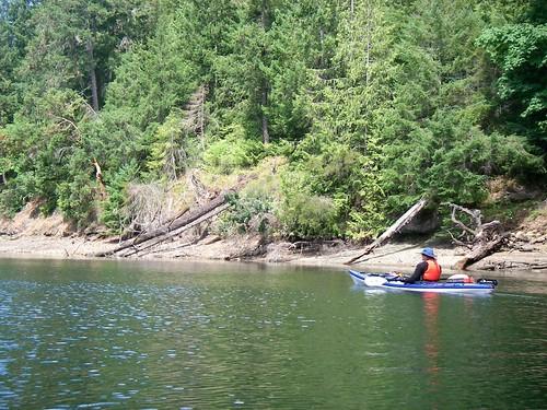 Paddling Down Tod Inlet