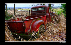 Old Red Chevy (Bonell Photography (dasbull)) Tags: old light red usa color colour art texture abandoned love tourism nature beautiful beauty field grass contrast truck vintage dark real lumix us photo washington amazing cool fantastic artwork flickr niceshot shot angle natural northwest image awesome feel great joy neglected perspective picture rusty location best sharp panasonic chevy frame pacificnorthwest pro northamerica wa washingtonstate pnw tone mossy crusty borders authentic exciting 2007 fz50 amature adna dmcfz50 panasonicdmcfz50 dasbull ronbonell
