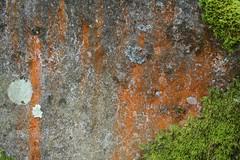 029 - balade du rocher