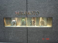 DSC03362 (gondo_slovakia_1) Tags: japan tokyo asia gondo